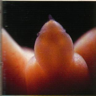 Этот маленький пенис принадлежит мальчику, которому пока всего 16